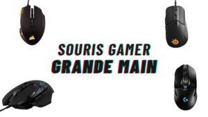 souris gamer grande main